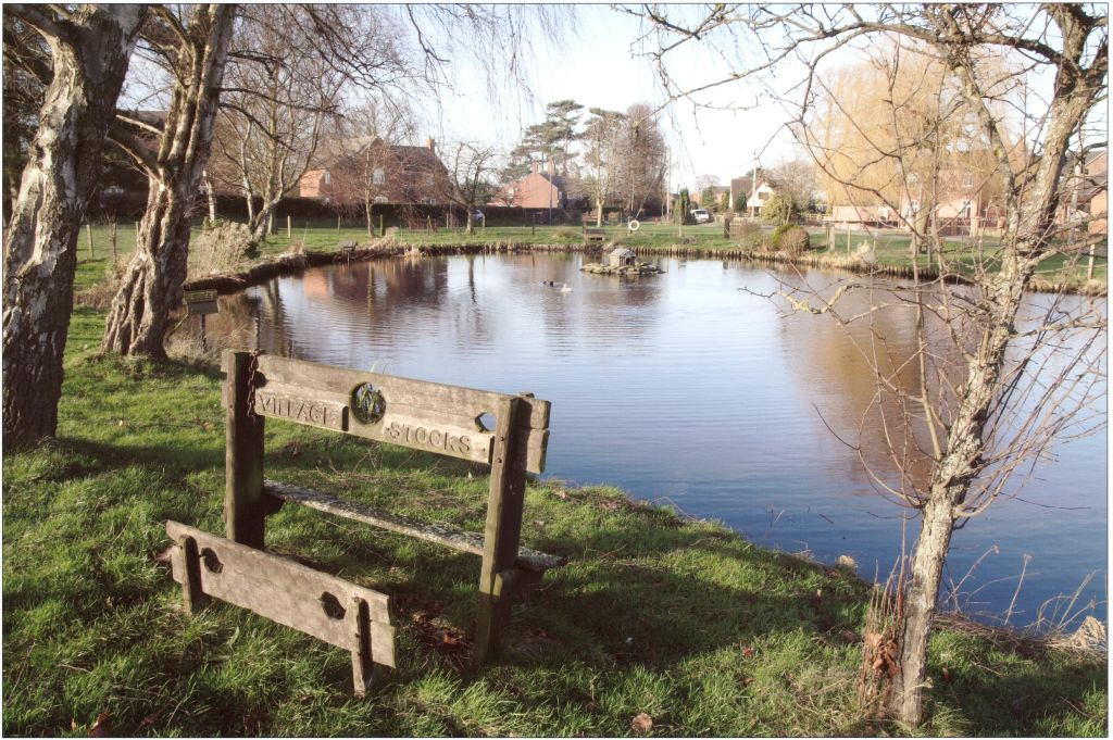 Image of Hankelow Pond